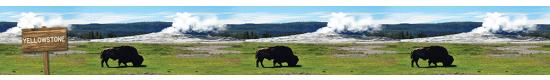 Yellowstone #460 - +$3.00